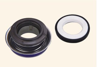 Auto Cooling Pump Seal WM F